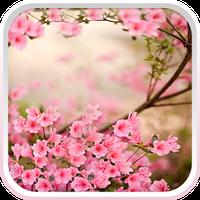 Flores de Primavera Papel